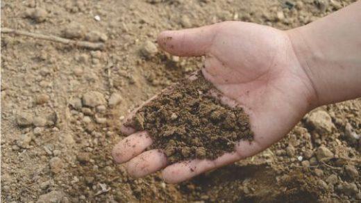 انواع آزمایش خاک